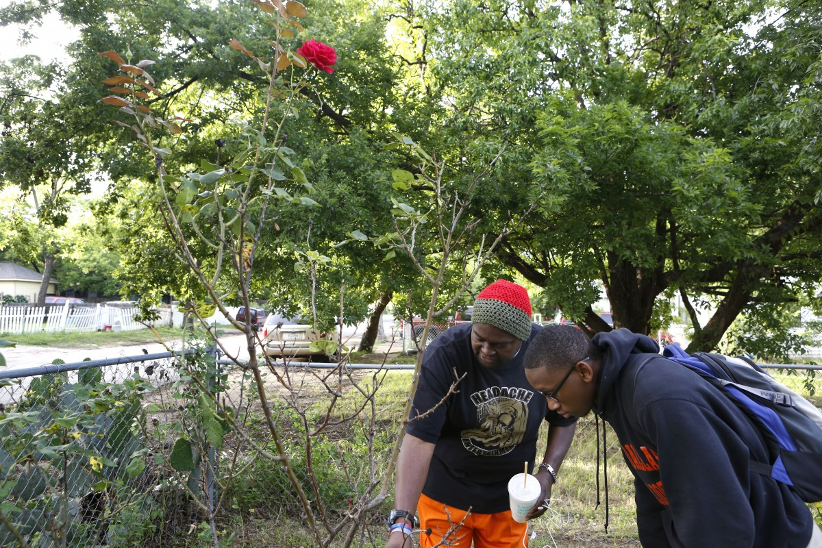 Charles 'CJ' Johnson instructs Desmond Davis on how to prune a rose bush at his home. Photo/Lara Solt